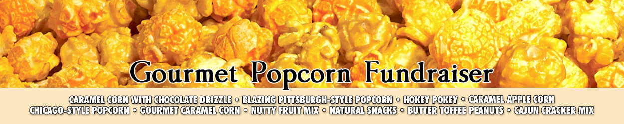 Gourmet Popcorn Promotional Banner